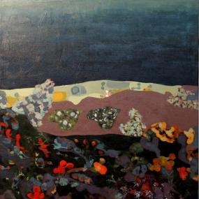 Surtsey, on the socle, marine fauna